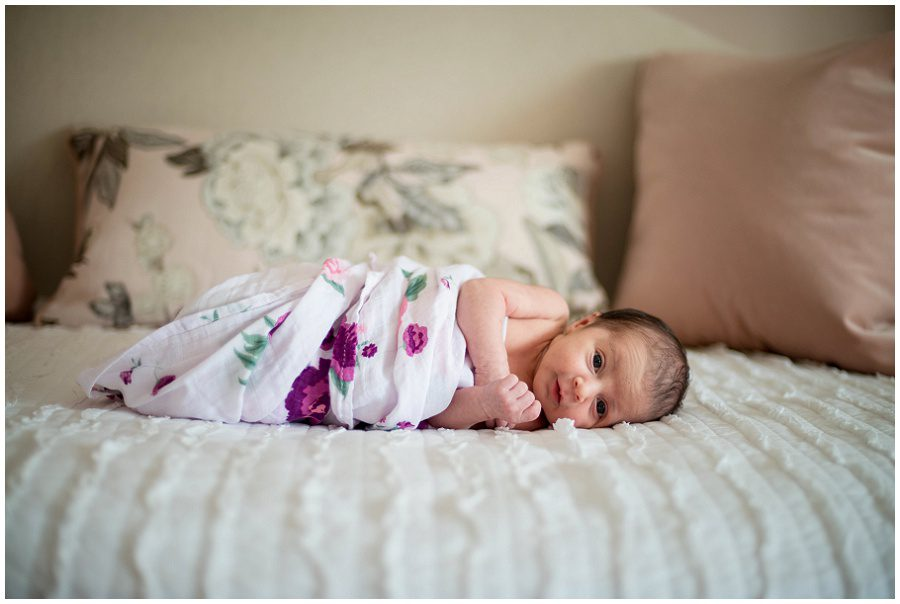 Newborn lying on sofa daybed swaddled by a purple floral blanket