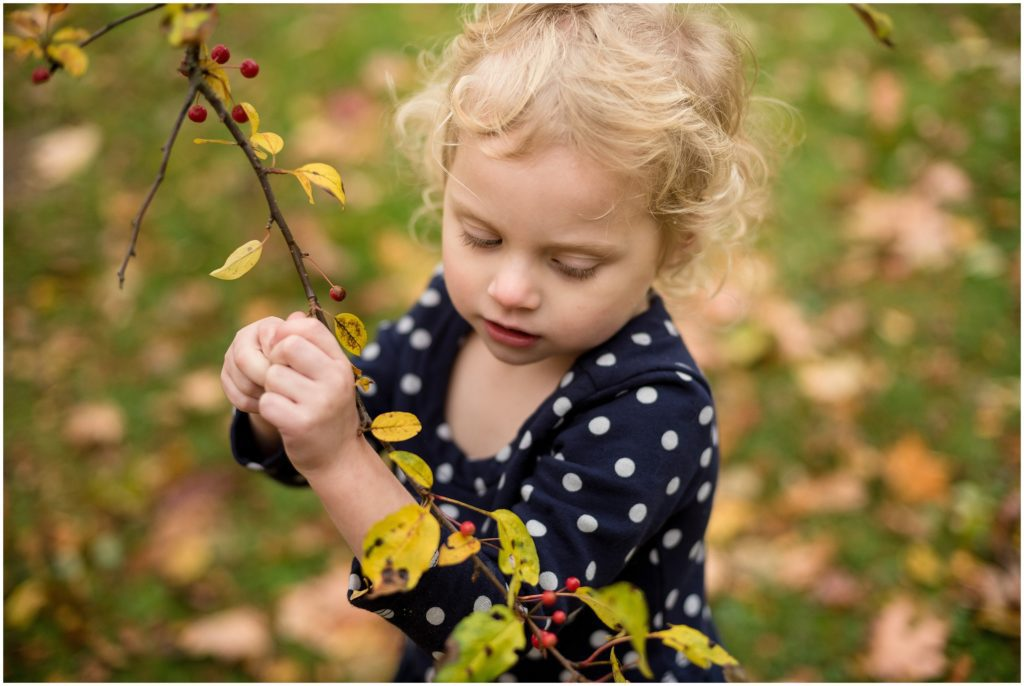 Child looking at branch Boston family photographer Fall foliage Larz Anderson