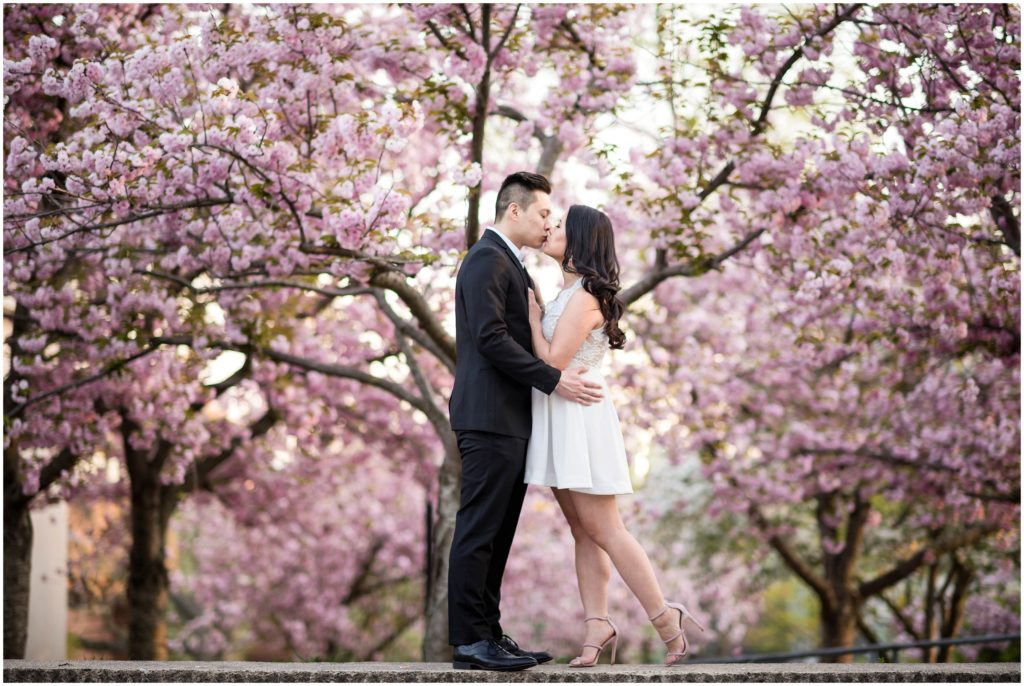 Boston Engagement session in Tufts during spring cherry blossom season