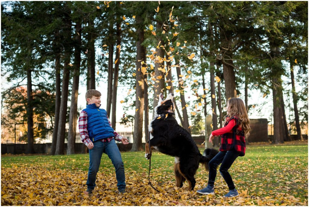 Dog catching leaves with brother and sister in Brookline Park