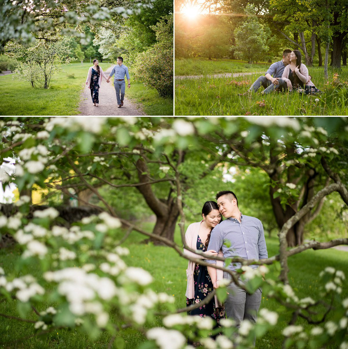 Arnold Arboretum engagement photography Session