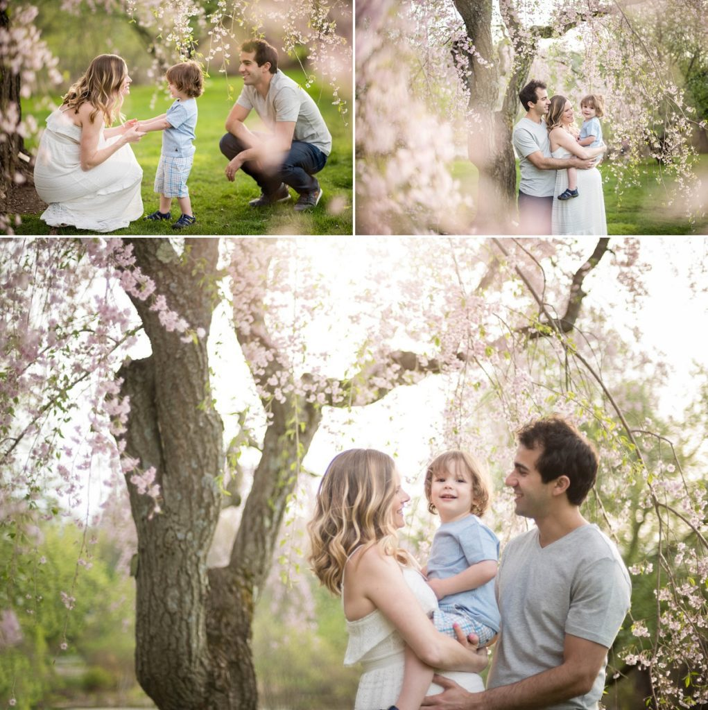 Arnold Arboretum Family photography Session