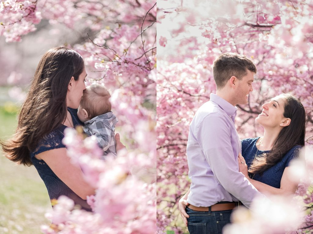 cherry blossoms bloom during spring along the Charles River in Boston. Spring outdoor photo session