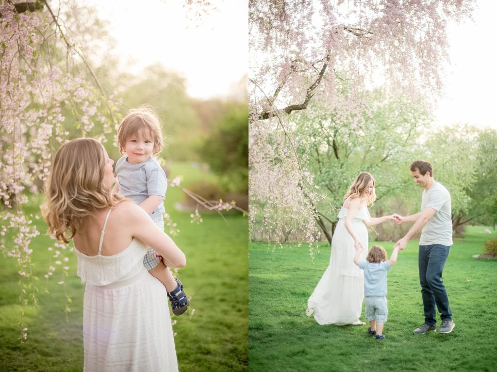 Arnold arboretum maternity outdoor spring photo session during blossoms in Boston